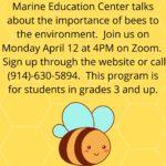 pre-school program importance of bees